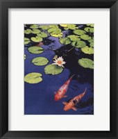 Koi Pond II Framed Print