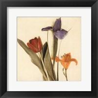 Tre Fiori I - Special Framed Print