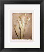 Poetica I - Mini Framed Print
