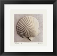 Sea Shapes II Framed Print