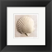 Sea Shapes II - Special Framed Print