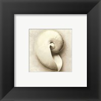 Sea Shapes III - Special Framed Print