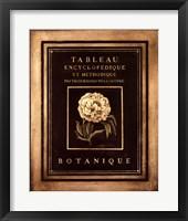 Les Fleurs De Paris II Framed Print