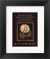 Les Fleurs De Paris II - Mini Framed Print