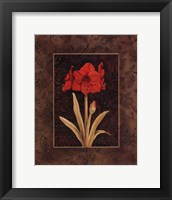 Damask Amaryllis - Mini Framed Print