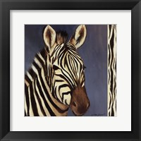 Framed Exotic Zebra - Mini