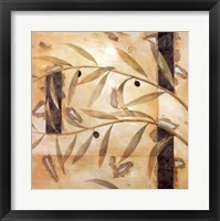 Framed Olive Branch I