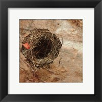 Framed Nest Red Leaf
