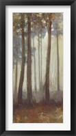 Framed Silver Trees I