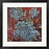 Framed Blue Agave I