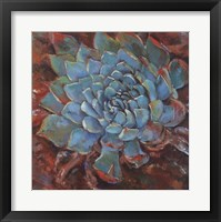 Framed Blue Agave II