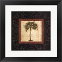 Mediterranean Palm Framed Print