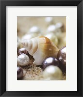 Sea Jewels I Framed Print