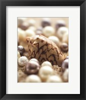 Sea Jewels IV Framed Print