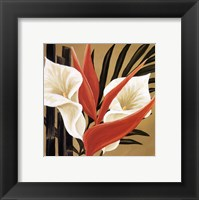 Sun Kissed IV Framed Print