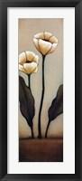 Jardin de Flores I Framed Print
