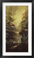 West Coast Trail II Framed Print