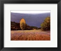 Framed Coline Bleue