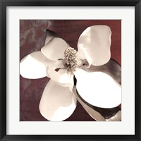 Framed Magnolia Blue I
