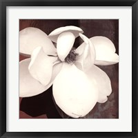 Framed Magnolia Blue II
