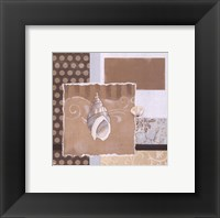 Shell Collage II Framed Print