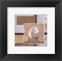 Shell Collage IV Framed Print