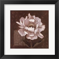 Petal Soft I Framed Print