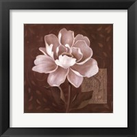 Petal Soft II Framed Print
