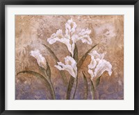 Framed Fleurs Meditatives I