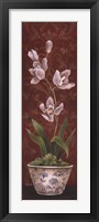Organic Orchids I Framed Print