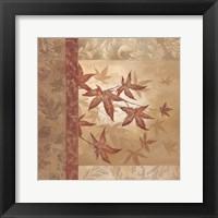 Framed Japanese Maple I