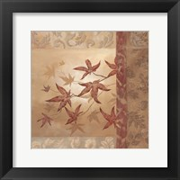 Japanese Maple II Framed Print