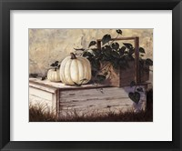 Framed White Pumpkins