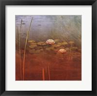 Pond Lilies II Framed Print