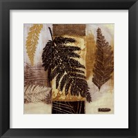 Patterns of Nature III Framed Print