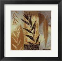 Patterns of Nature IV Framed Print