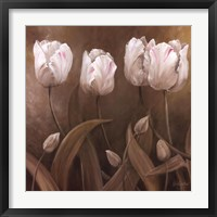 Framed Sepia Tulips II
