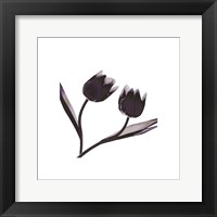 Framed Tulip Dance