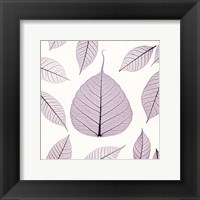 Framed Leaf X-ray