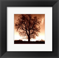 Framed Winter Tree No. 1
