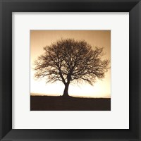 Framed Winter Tree No. 2