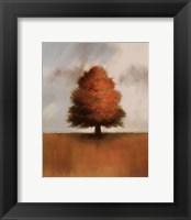 Framed Lonely Oak