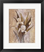 Framed Summer Iris II