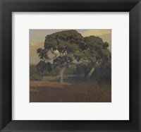 Framed Oaks