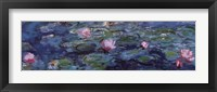 Framed Water Lilies (Detail)