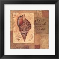 Discover - Shell Framed Print