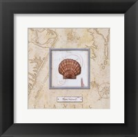 Sea Treasure II - mini Framed Print