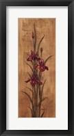 Iris of Delos II - mini Framed Print