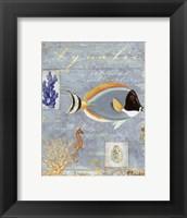 Aquatic - mini Framed Print