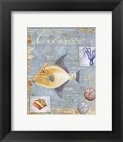 Oceanic - mini Framed Print